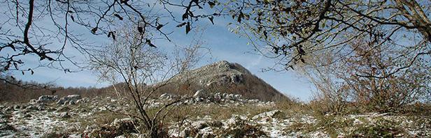 Monti Alburni: circuito del monte Tirone - domenica 13 novembre 2016