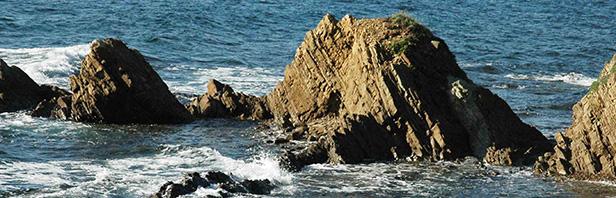 Punta Licosa: traversata da San Marco di Castellabate a Ogliastro - domenica 20 novembre 2016
