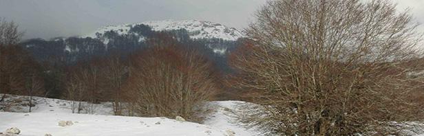 Monti Alburni: anello al rifugio Panormo dalla valle del Ciuccio - domenica 29 gennaio 2017