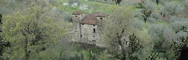 Da Sant'Angelo a Fasanella a Corleto Monforte: il sentiero degli antichi mulini - domenica 2 aprile 2017