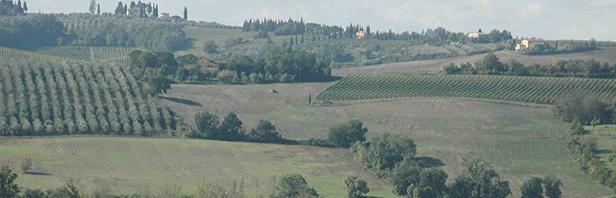 Firenze : anello di Pian Dei Cerri