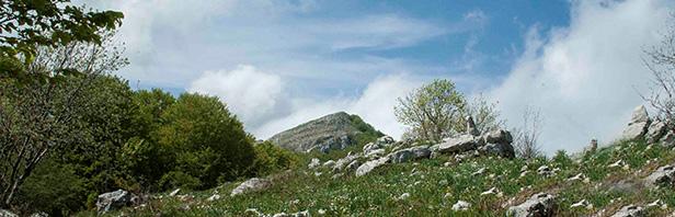 Monti Alburni: un anello per Monte Tirone - lunedi 30 aprile 2018