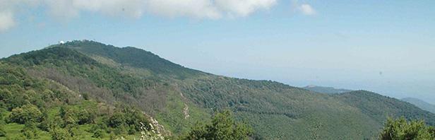Monte Stella Cilento : escursione ad anello - domenica 1 luglio 2018