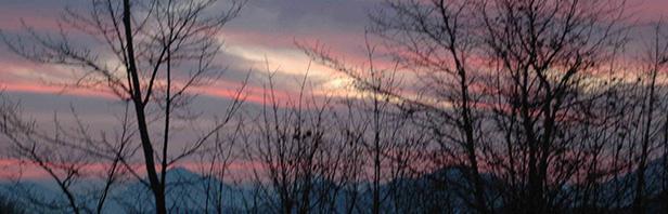 Monti Picentini: un anello per la raianetta del polveracchio - 2 dicembre 2018
