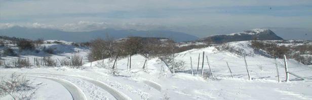 Monti Alburni: traversata   da Tempa del Prato a Costa Palomba - con il gruppo speleologico DAUNO - domenica 27 gennaio 2019