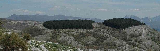 Il sentiero dei pastori - traversata da Castelcivita a Ottati - 20 aprile 2019