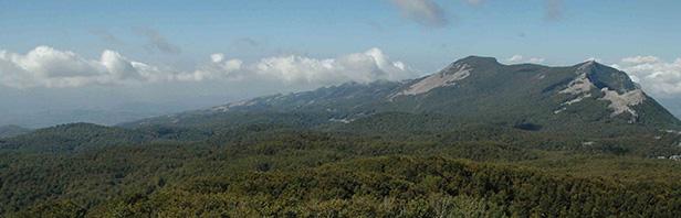 L'anello della Vetta dei Monti Alburni - domenica 29 settembre 2019