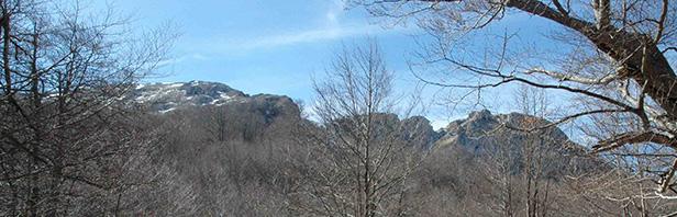 Monte Cervati - domenica 23 febbraio 2020