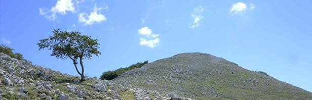 Traversata integrale del monte Puglia - domenica 21 giugno 2020