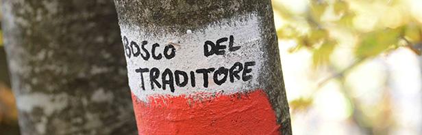 Montagnola del Motola - Piaggine - domenica 1 novembre 2020