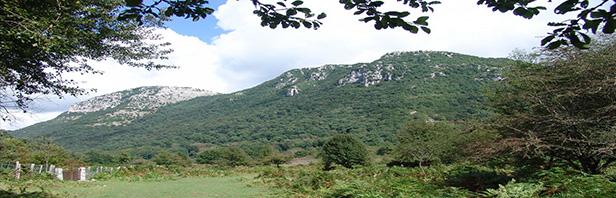 Laurino: Monte Vesole
