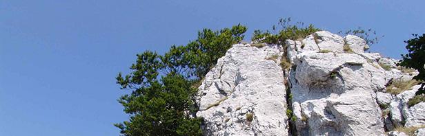 Monti Alburni - Cima del Monte Urto 7 agosto 2015