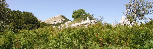 Monti Alburni - Vetta del Tirone 18 agosto 2015