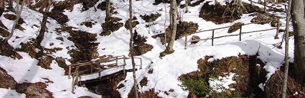 Monte Polveracchio: Oasi del Wwf 24 gennaio 2016