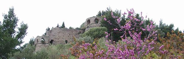 Capaccio: Madonna del Granato e monte Calpazio - domenica 10 Aprile 2016