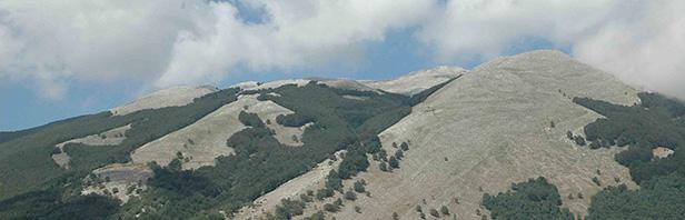 Monte Cervati : affondatore di Vallevona - 10 agosto 2016
