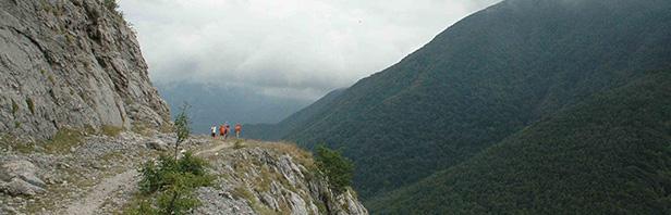 Monti Pcentini : Terminio - vallone dello Scorzella - 17 agosto 2016