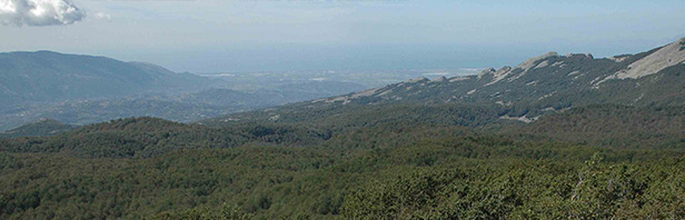 Monti Alburni: cima del monte Alburno dal rifugio Panormo - domenica 25 settembre 2016