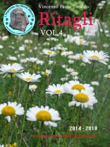 copertina vol 4